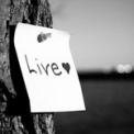 Live__by_missjessicajoy